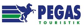 Цифровой дождь - клиент - PEGAS Touristik