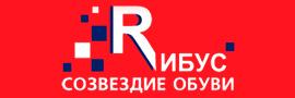Цифровой дождь - клиент - РИБУС
