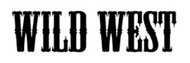 Цифровой дождь - клиент - WILD WEST
